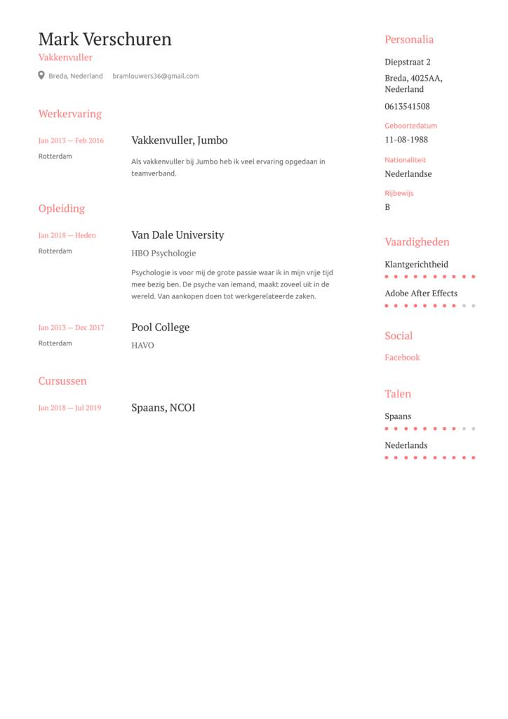 cv voorbeeld vakkenvuller pdf