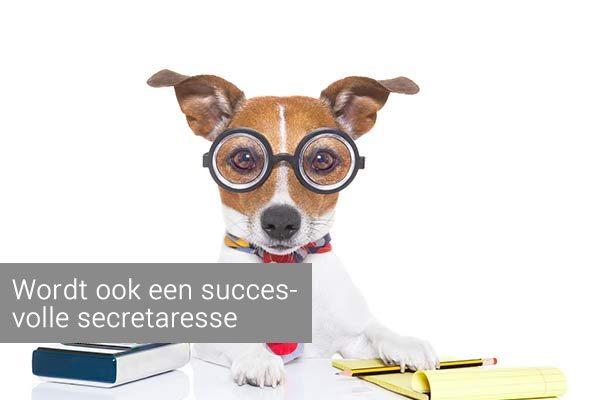 cv secretaresse