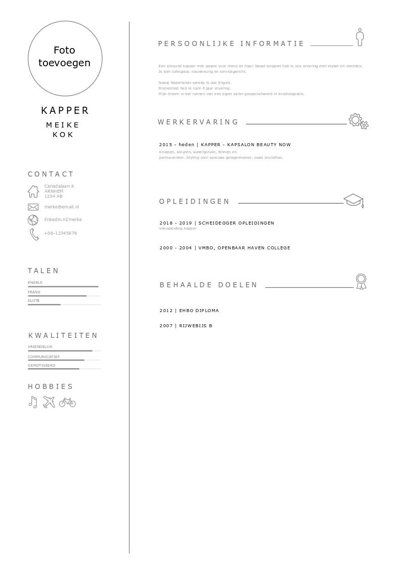 cv in PDF