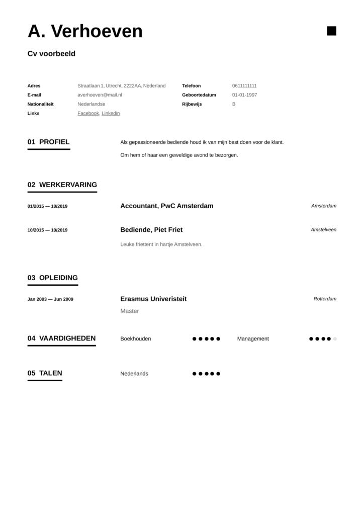 professioneel cv template pdf