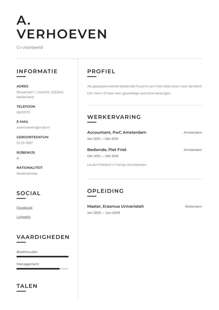 standaard cv voorbeeld pdf