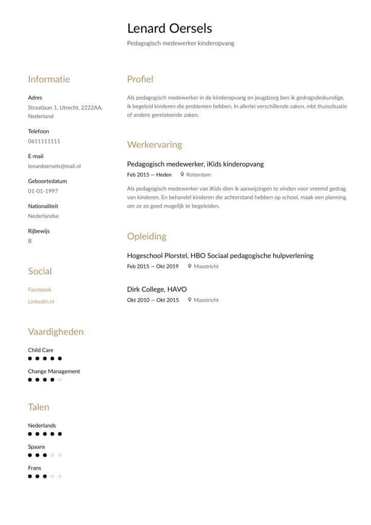pedagogisch medewerker 2